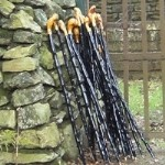 blackthornsticks-150